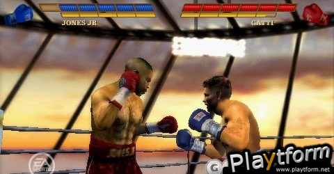 Fight Night Round 3 (PSP)