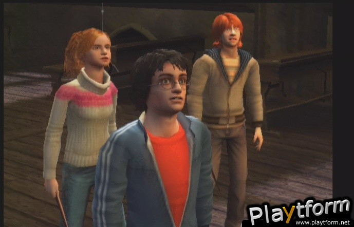 Harry Potter and the Goblet of Fire (PlayStation 2)