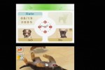 Nintendogs: Chihuahua and Friends (DS)