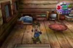 Harvest Moon: A Wonderful Life (GameCube)